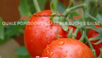 Quale pomodoro usare per salse e sughi. Pomì